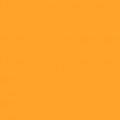 Cadmium Orange (Hue)