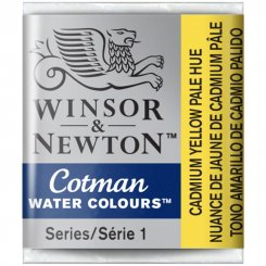 Cadmium yellow pale hue 119 Winsor & Newton