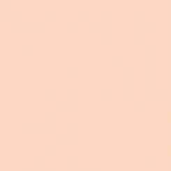 Americana Acrylics Sugared peach DA354
