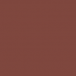 Americana Acrylics Traditional burnt sienna DA223