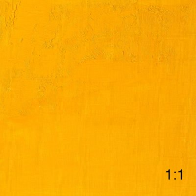 Cadmium Yellow Medium 116 1:1
