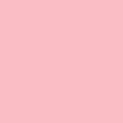 Carnation pink - Patio Paint outdoor 59 ml