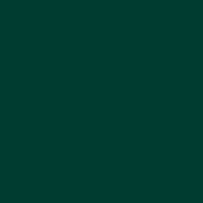 Pine Green - Patio Paint outdoor 59 ml