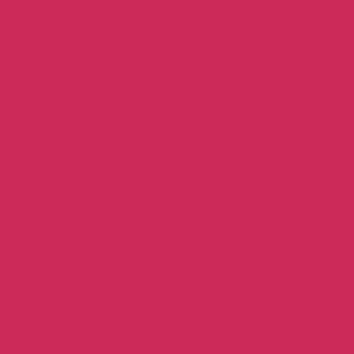 Raspberry Red - Patio Paint outdoor 59 ml