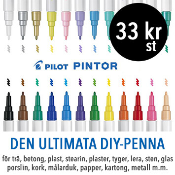 Pilot Pintor pennor markers